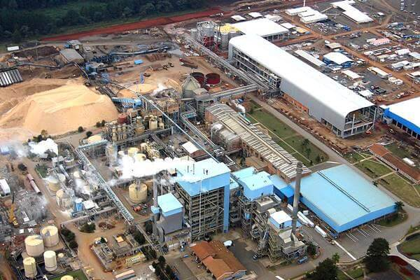 FOX Brasil Project Logistics for Pulp and Paper Industry